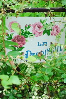 ガーデンカフェグリーンローズにて_a0115684_3264466.jpg