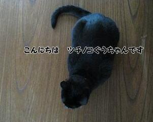 b0084186_15403497.jpg