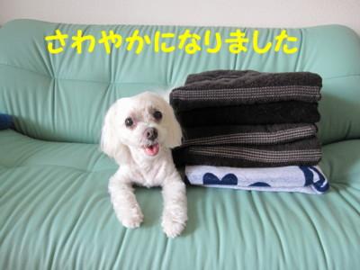 f0145192_1623439.jpg