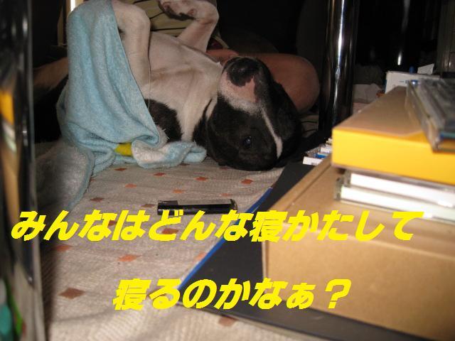 f0180994_037221.jpg