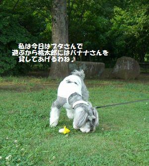 f0197317_14342091.jpg