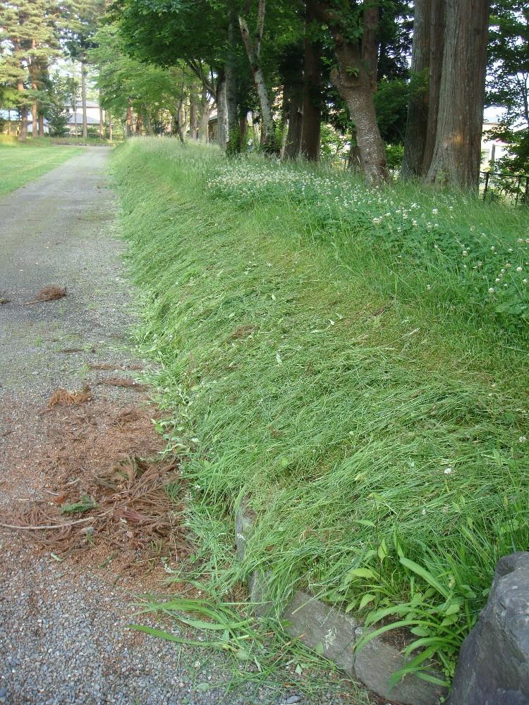 草刈り_c0111229_18454011.jpg