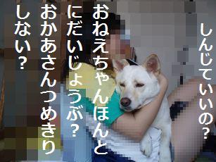 f0195543_1316141.jpg