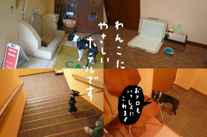 f0170072_15311775.jpg