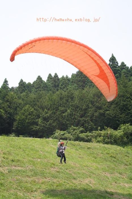 I\'m Flying! I can Fly!!_c0158775_2128569.jpg