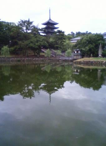 奈良町 3:猿沢池_e0054299_12454472.jpg