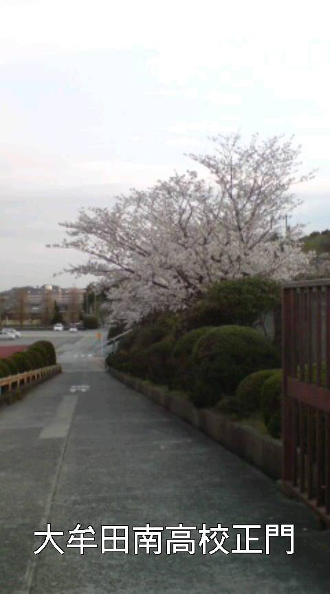 卒業 別れの季節_b0183113_1639550.jpg