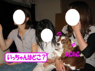 b0185323_16264866.jpg