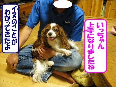 b0185323_16305272.jpg