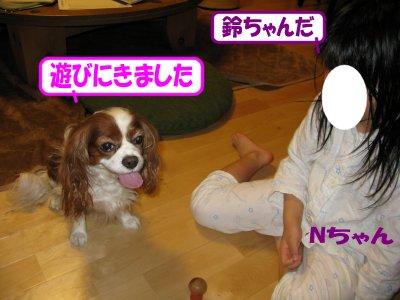 b0185323_1643521.jpg