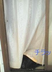 f0077931_16533443.jpg