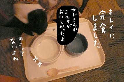 f0170072_137080.jpg