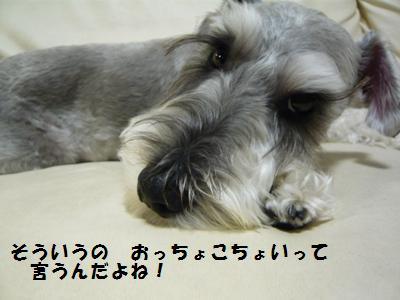 f0157373_22154584.jpg