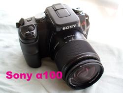 b0132475_1050454.jpg
