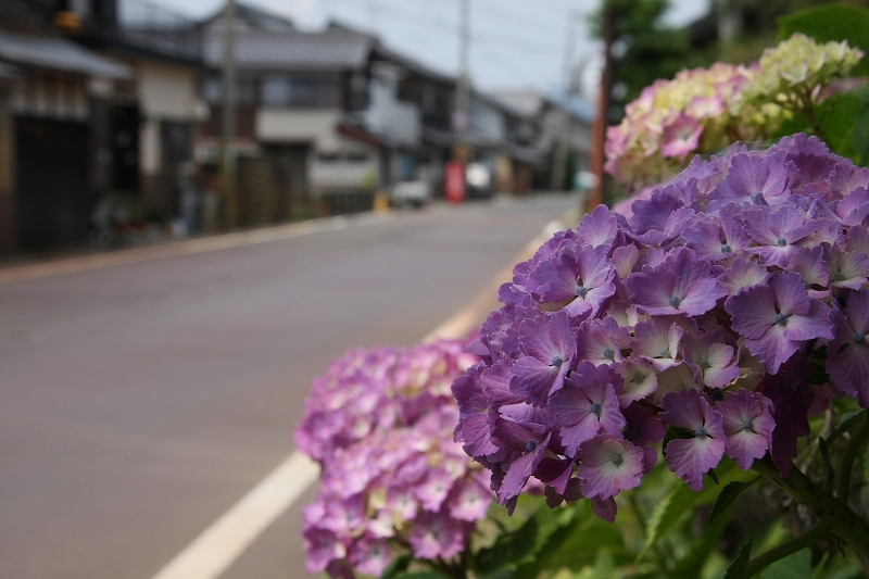 北国海道1 今津宿_c0196076_2023439.jpg