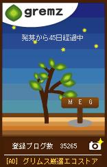 d0134977_1115378.jpg