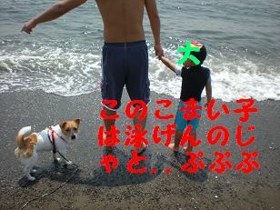 c0188294_16193639.jpg