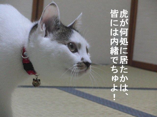 e0171996_1421132.jpg