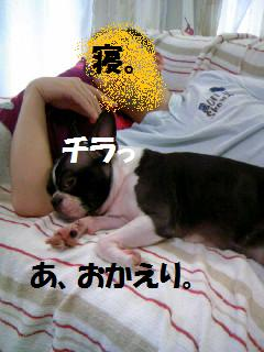 c0092097_17124324.jpg