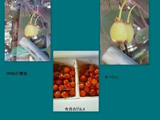 c0132097_10102134.jpg