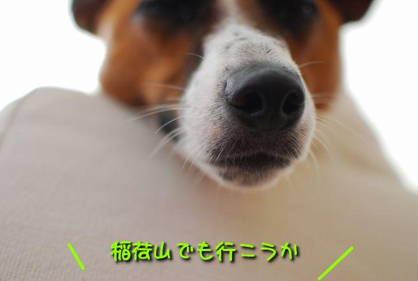 f0203612_0413452.jpg