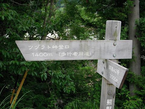 ツヅラト峠_c0077531_0831.jpg