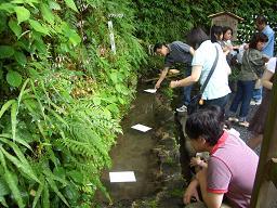 京都・貴船神社 水まもり_c0085539_3382173.jpg