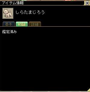 e0081559_19344338.jpg