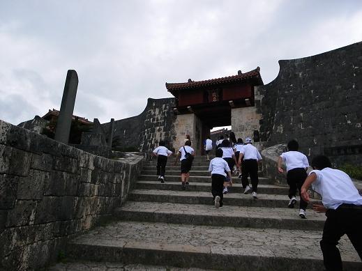 沖縄の思い出 ★ 最終日_c0151965_1804084.jpg