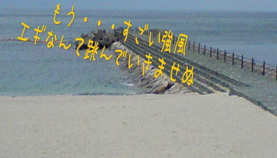 c0169168_2253493.jpg
