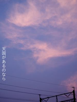 c0145183_1633391.jpg