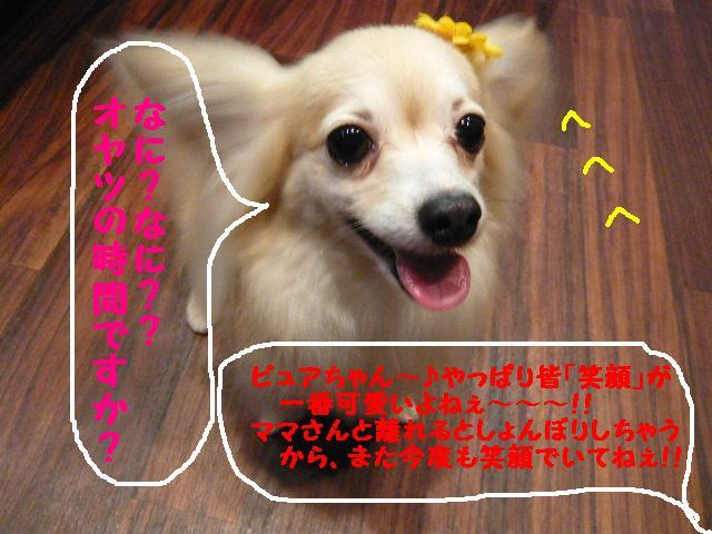 b0130018_19351099.jpg
