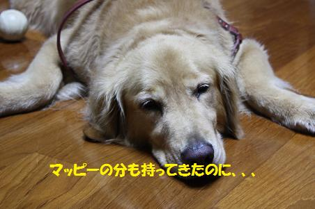 f0114128_2057367.jpg