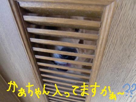 f0176830_2224976.jpg