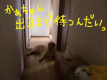 f0176830_224523.jpg