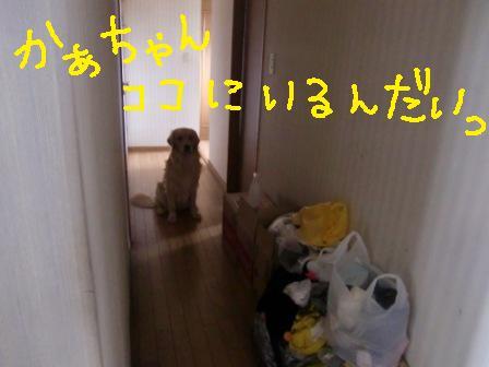 f0176830_224682.jpg