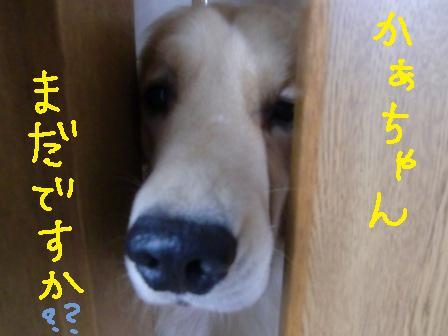 f0176830_2254231.jpg
