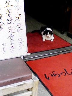 招き猫_e0089232_2081361.jpg