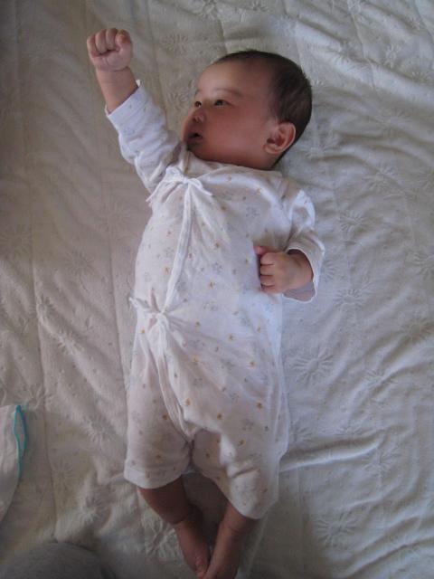 http://pds.exblog.jp/pds/1/200906/30/60/f0150260_225331.jpg