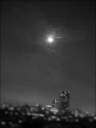 銀河鉄道の夜_f0160063_547336.jpg