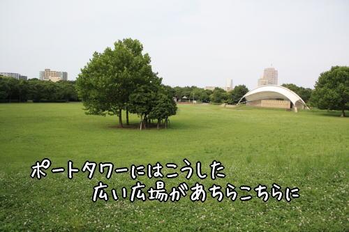 f0187974_9584759.jpg