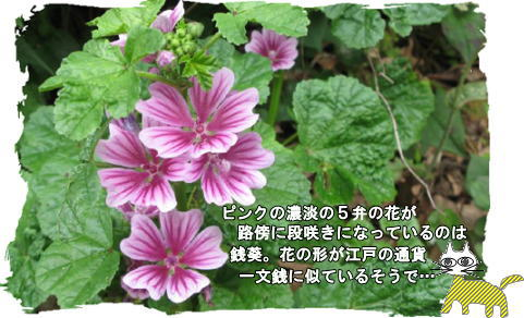 f0137096_14463991.jpg