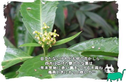 f0137096_1446810.jpg