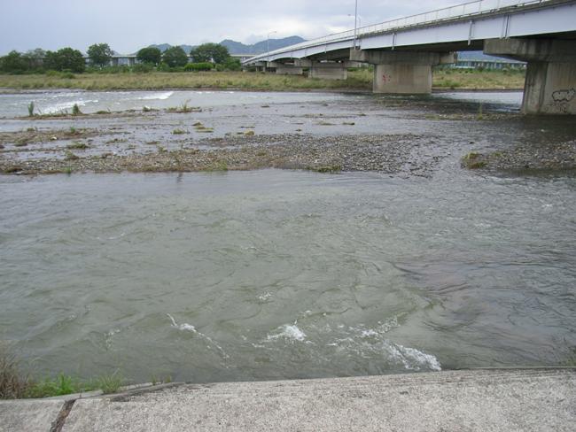 恵みの雨で重信川は?_b0186200_23593256.jpg