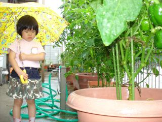 雨の日のマコちゃん_e0166301_1604162.jpg