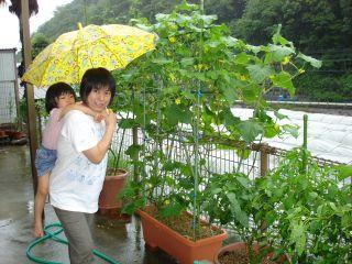雨の日のマコちゃん_e0166301_164443.jpg