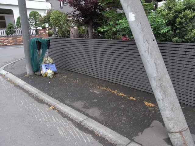 ゴミ有料化初日_c0025115_18461746.jpg
