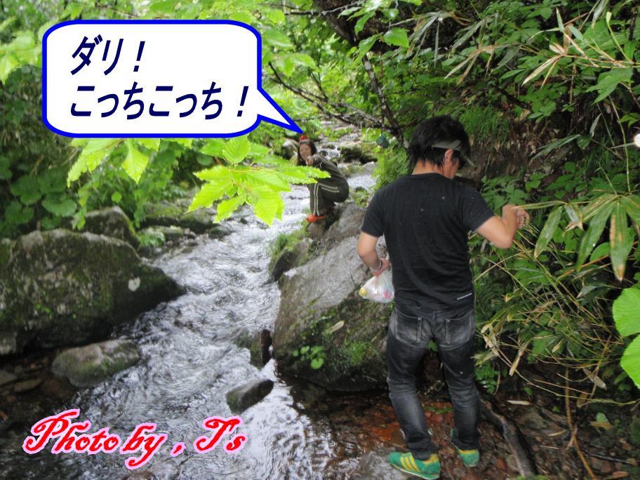f0147821_14513643.jpg