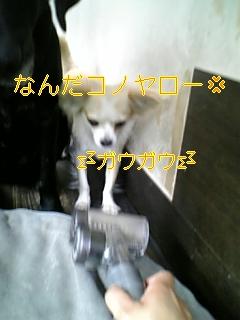 f0148927_13334630.jpg