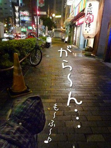 雨のモフモフ売り_c0062832_16423452.jpg